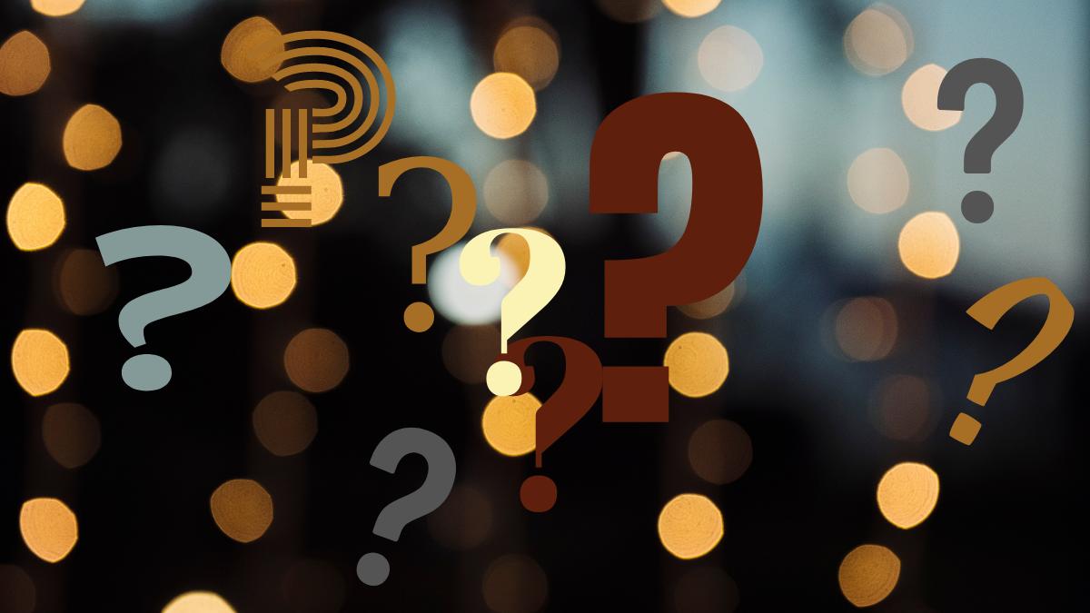 2020: Gerçekten Dayanışmanın Yılı mıydı?