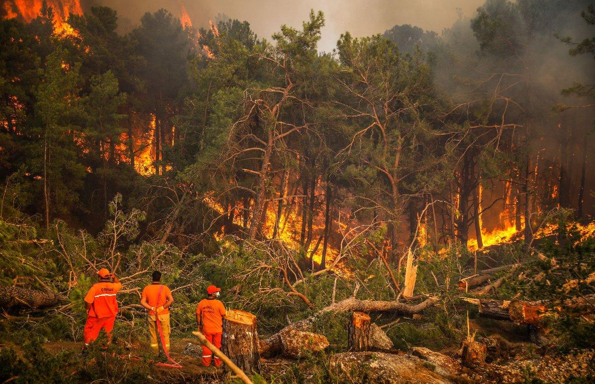 Türkiye ve Güney Avrupa'da Korkunç Orman Yangınları: Kim Suçlu?
